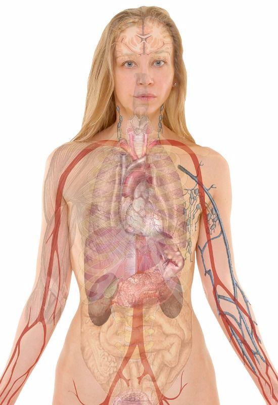 salud omega 3 personas