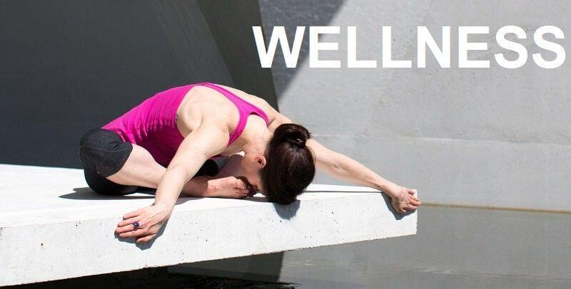 wellness estilo de vida